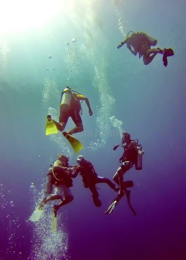 轻潜水员在伯利兹海湾海岛  免版税库存照片