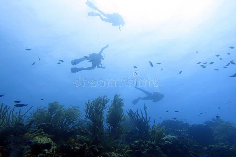 轻潜水员在海洋 库存图片