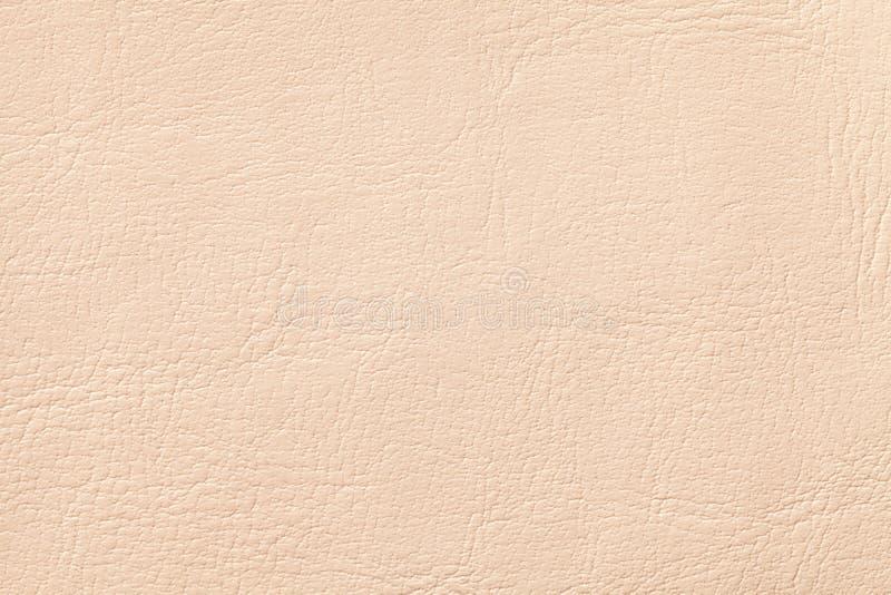 轻的珊瑚皮革纹理背景,特写镜头 米黄破裂的背景 免版税库存图片