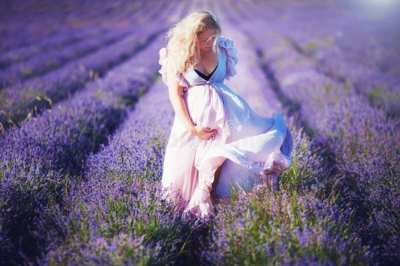 轻的礼服的年轻人孕妇走通过淡紫色领域的 免版税库存图片