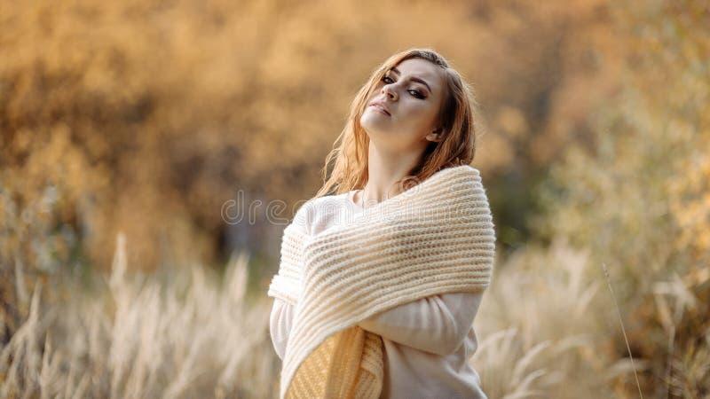 轻的衣裳的红发女孩以秋天森林和黄色耳朵为背景 免版税库存照片