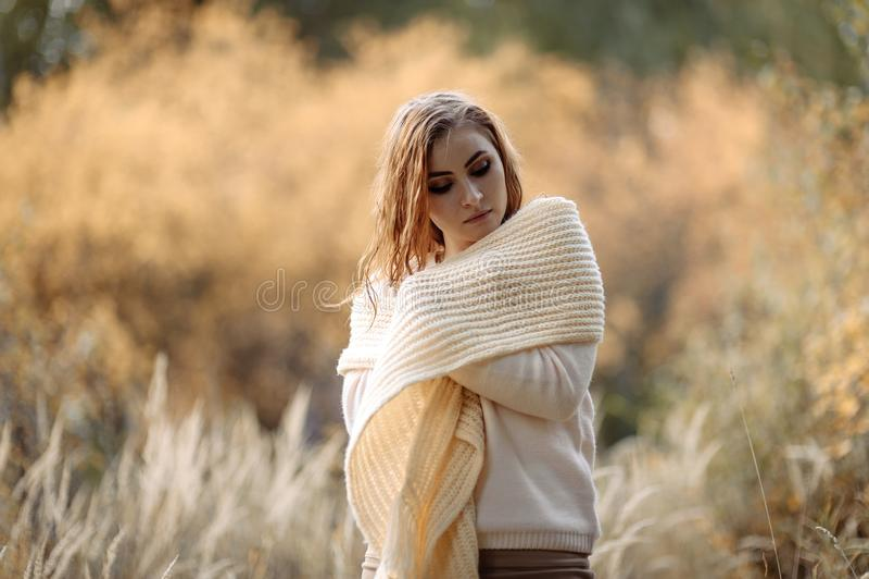轻的衣裳的红发女孩以秋天森林和黄色耳朵为背景 免版税图库摄影