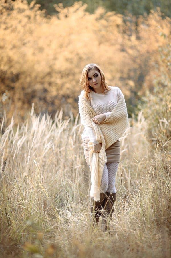 轻的衣裳的红发女孩以秋天森林和黄色耳朵为背景 免版税库存图片