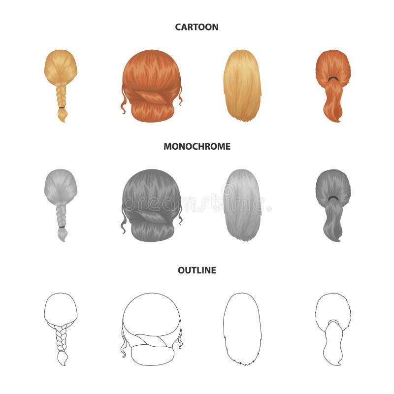 轻的辫子、鱼尾巴和发型的其他类型 后面在动画片,概述的发型集合汇集象,单色 皇族释放例证