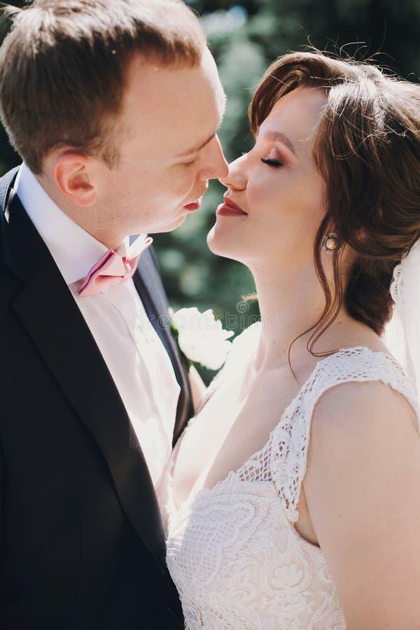轻轻地亲吻在晴朗的公园的令人惊讶的褂子和时髦的新郎的华美的新娘 享受时间的美好的愉快的婚姻的夫妇和 免版税库存照片