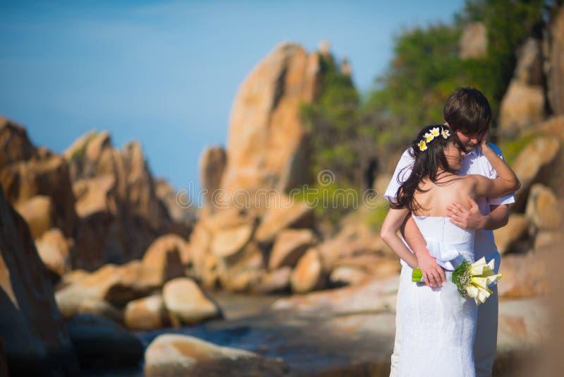 轻轻地拥抱反对美丽的风景、山和海的新娘和新郎 免版税库存照片