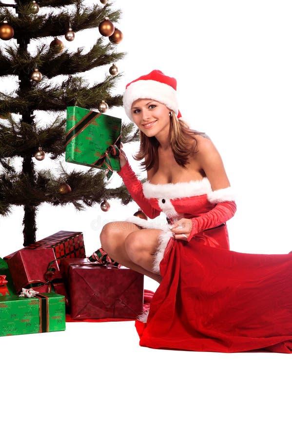 辅助工s性感的圣诞老人 库存照片