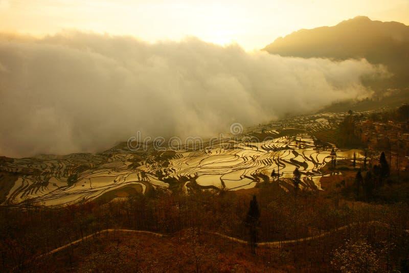 输入和报道米领域的薄雾云彩在日落在中国 免版税库存照片