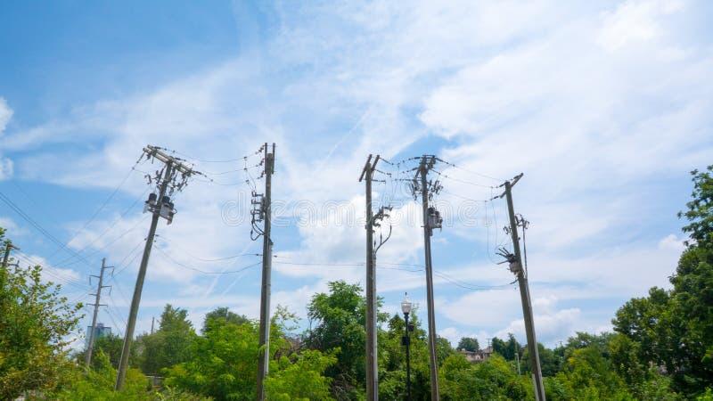 输电线临近森林 库存照片