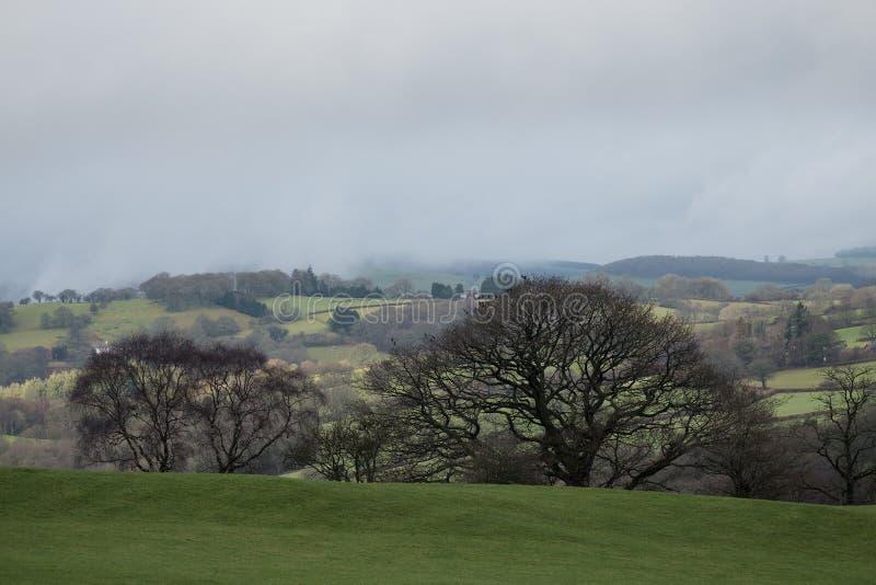 辗压威尔士谷的农场土地 库存图片