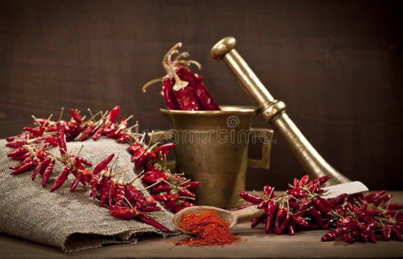 辣椒和磨房 免版税库存照片
