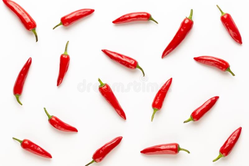 辣椒或辣椒在白色背景保险开关隔绝的辣椒 图库摄影