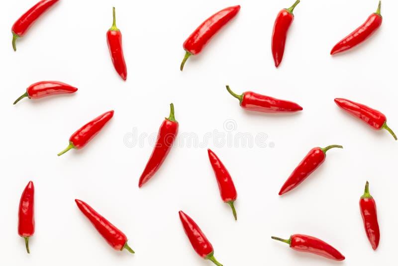 辣椒或辣椒在白色背景保险开关隔绝的辣椒 免版税库存照片