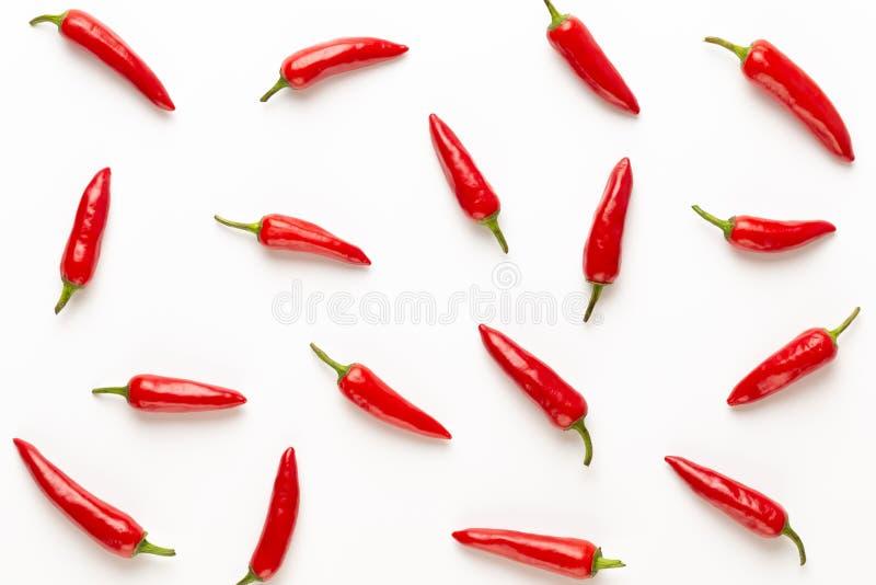 辣椒或辣椒在白色背景保险开关隔绝的辣椒 库存图片