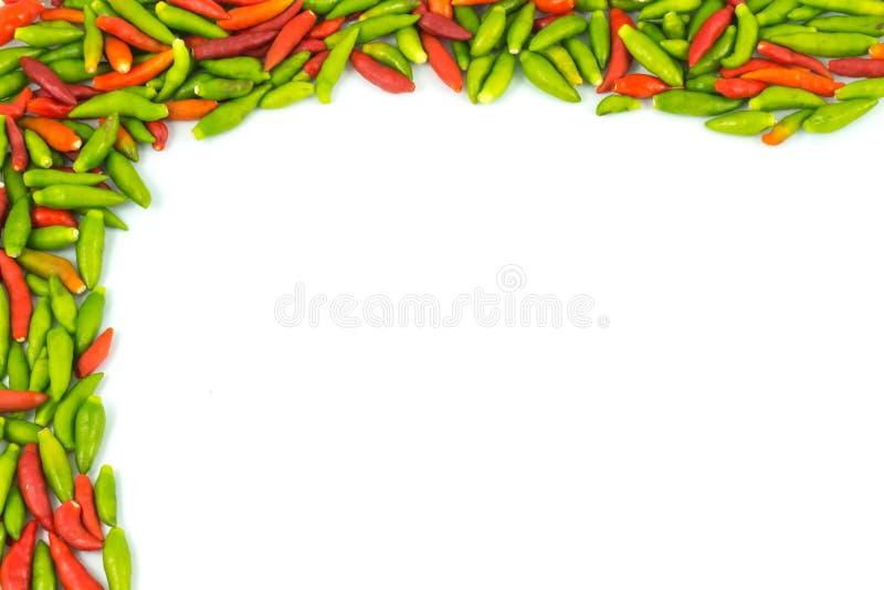 辣椒框架和背景 库存图片