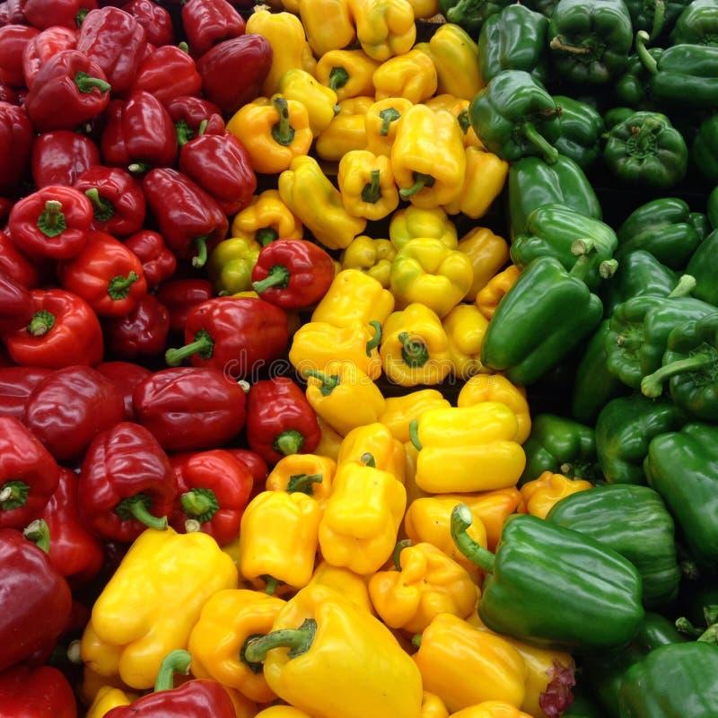 Download 辣椒的果实 库存照片. 图片 包括有 绿色, 白天, 工厂, 蔬菜, 本质, 红色, 销售额, ,并且, 颜色 - 62526074