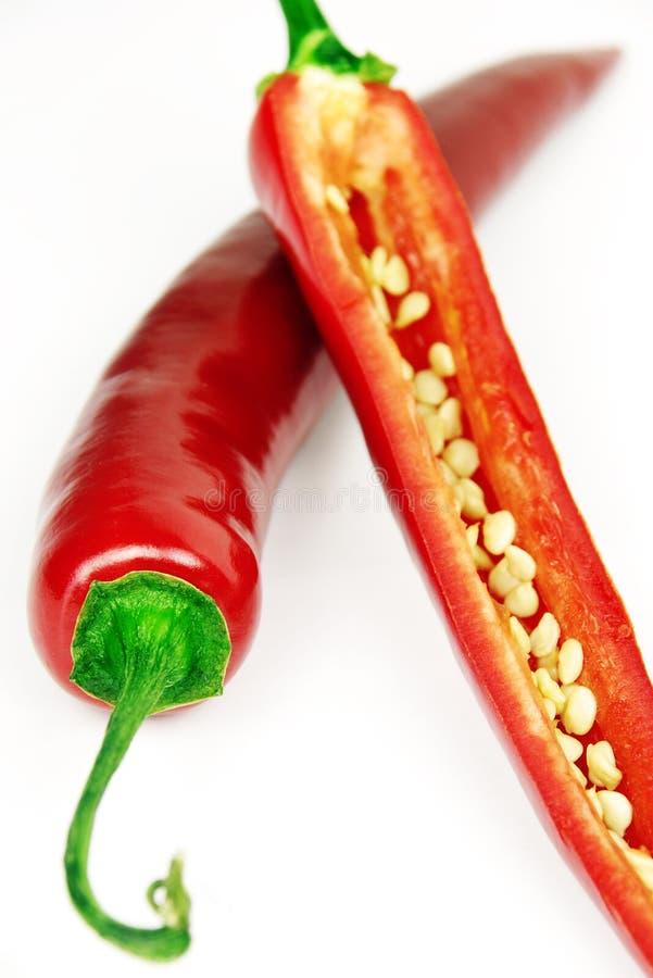 辣椒种子 库存照片