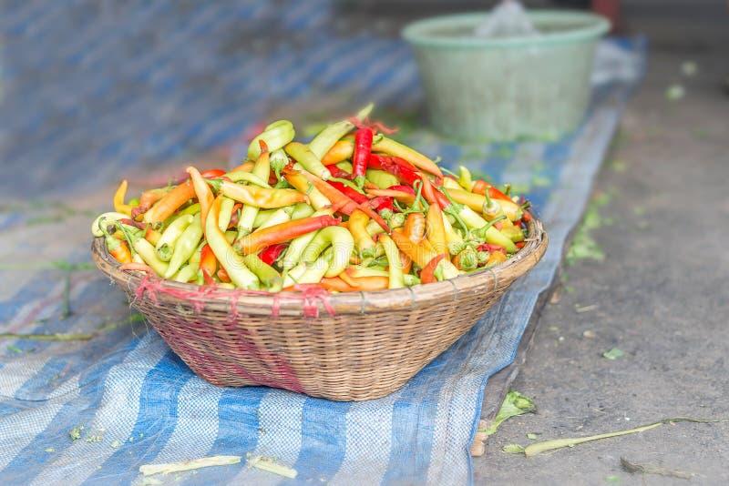 辣椒选择聚焦在方平组织的在新鲜食品m 免版税库存照片