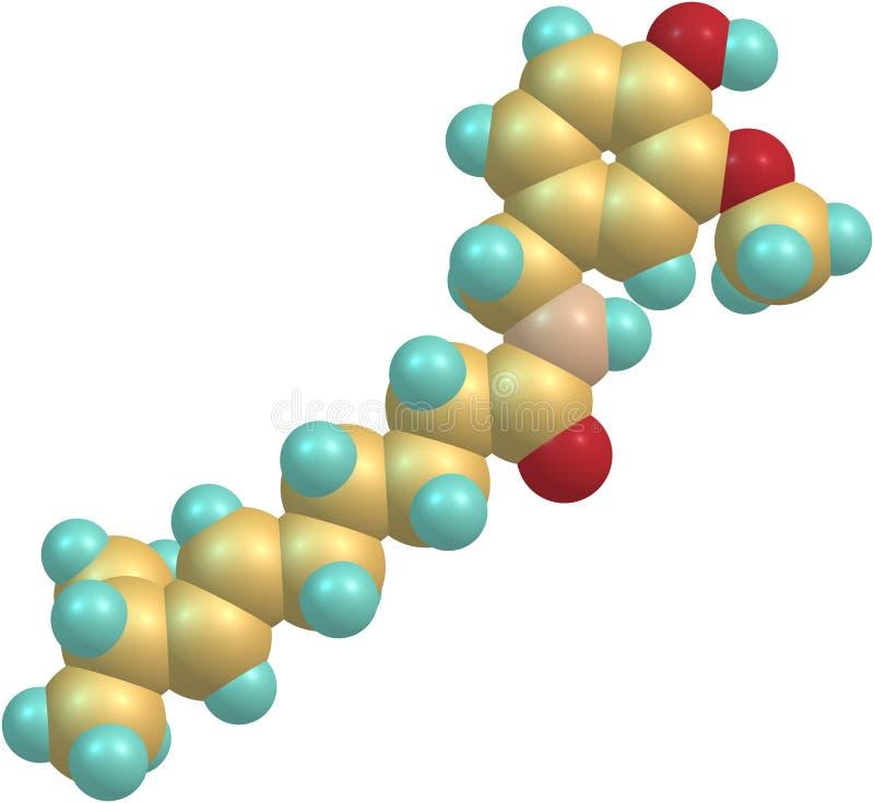 辣椒素分子结构 皇族释放例证
