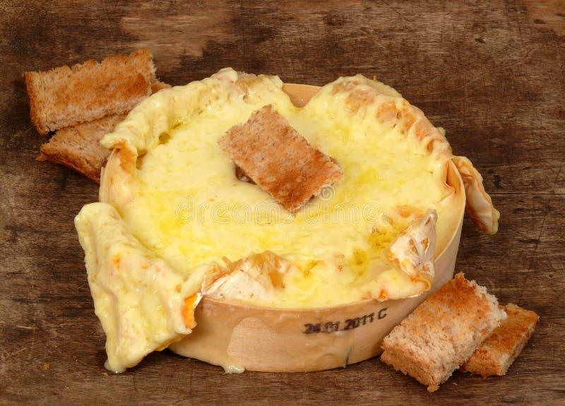 辣的干酪 免版税库存照片
