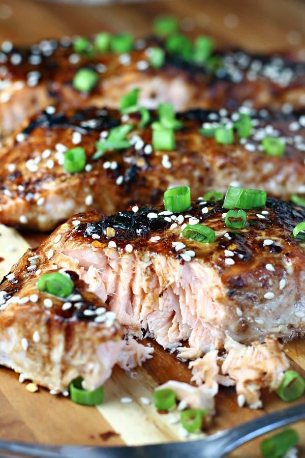 辣被烘烤的三文鱼 免版税库存图片