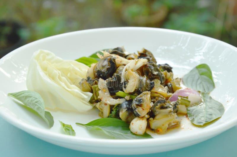 辣金黄苹果蜗牛用在板材的草本沙拉 库存图片