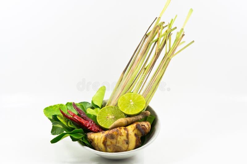 辣香茅汤 免版税库存图片
