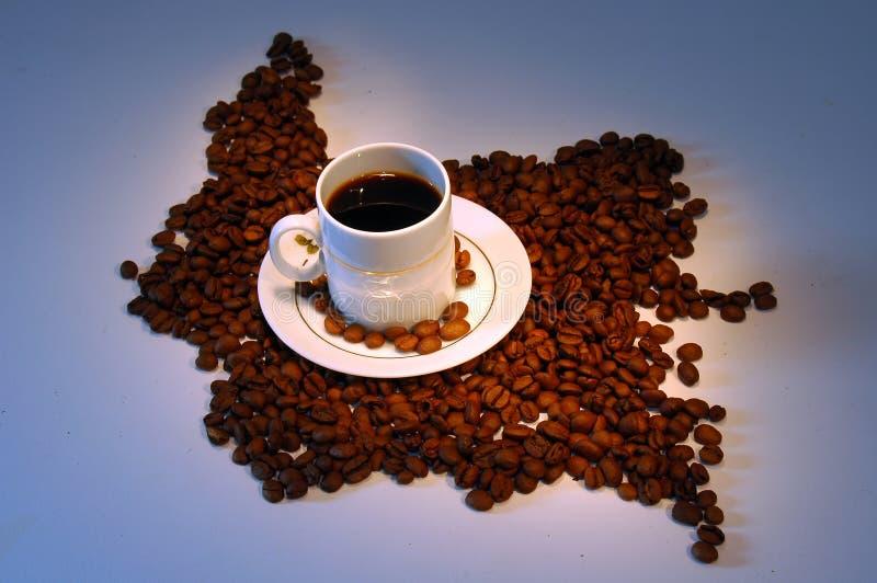 边界咖啡哥伦比亚 免版税图库摄影