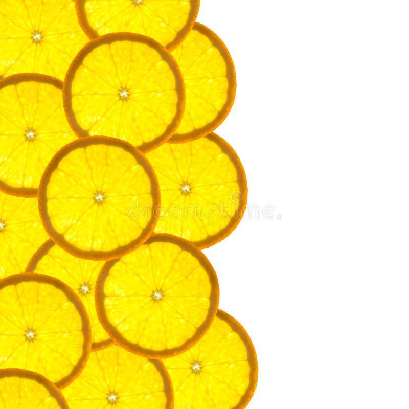 边界柑桔桔子片式 库存图片