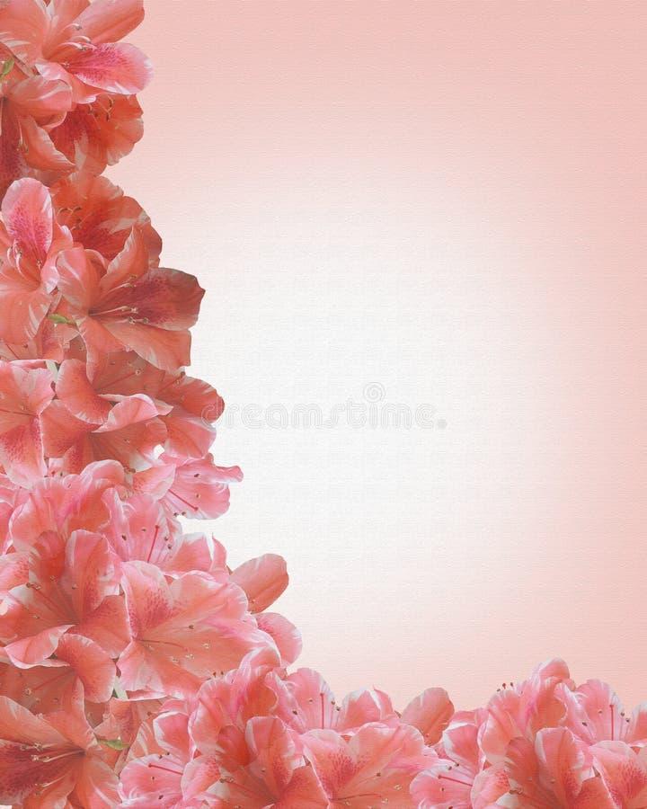边界画布花卉粉红色 皇族释放例证