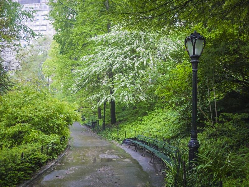 边路在中央公园,纽约城 免版税库存照片
