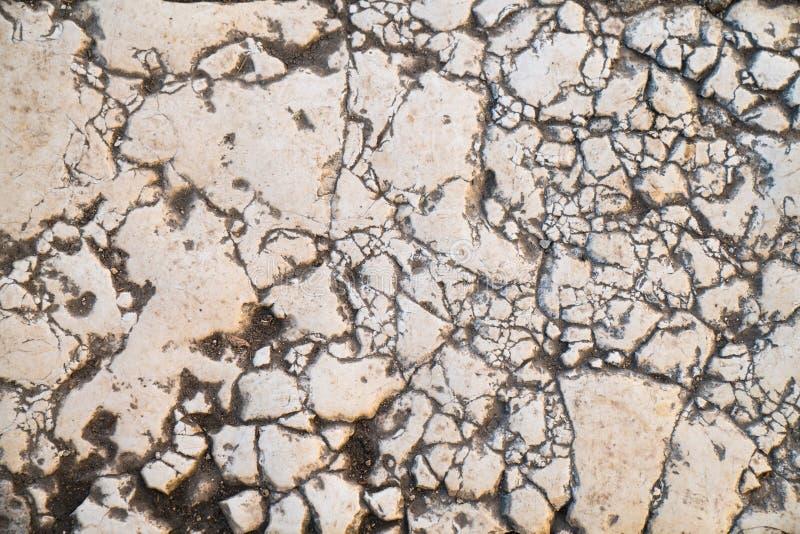 边路瓦片,边路的纹理在圣殿山的在耶路撒冷 库存照片