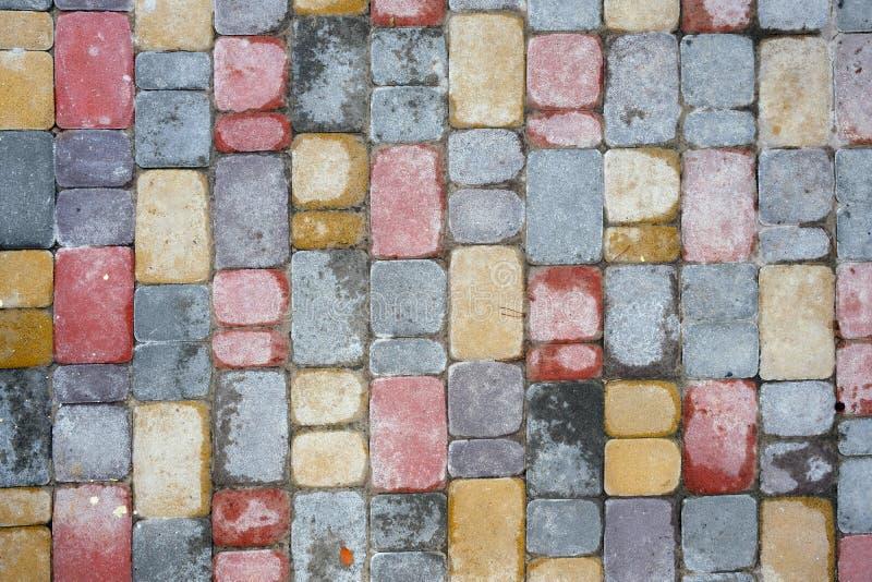 边路的装饰多彩多姿的瓦片在雨以后 r 免版税图库摄影