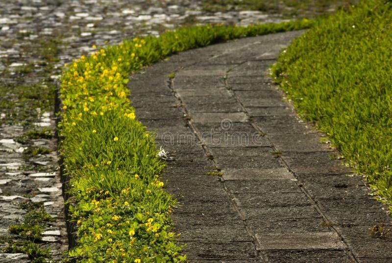 边路街道花匠在危地马拉,cetral美国 图库摄影