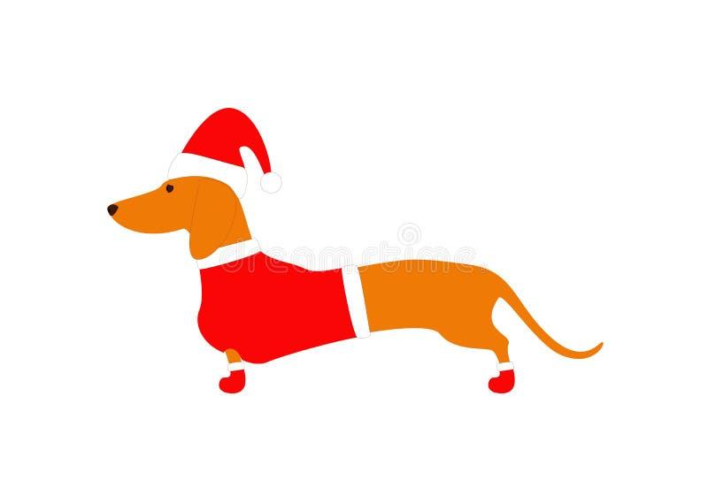 达克斯猎犬佩带的圣诞节衣服 向量例证