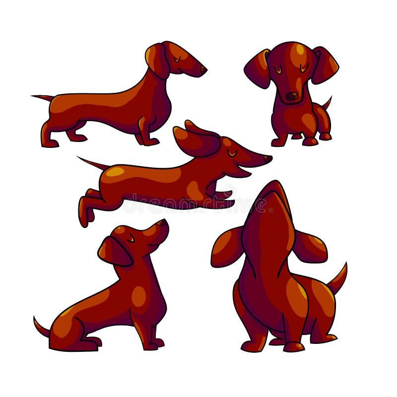 达克斯猎犬动画片颜色字符集合 向量例证