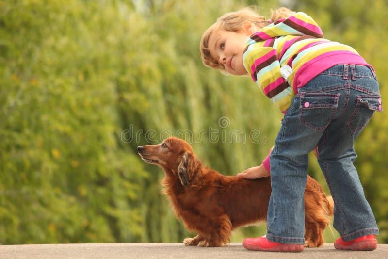 达克斯猎犬女孩她一点 免版税库存照片