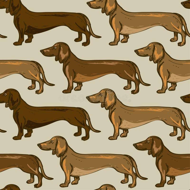 达克斯猎犬狗的无缝的样式 皇族释放例证