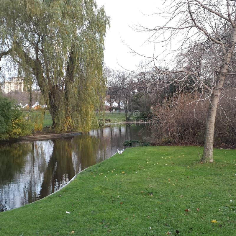 达姆施塔特庭院 库存照片