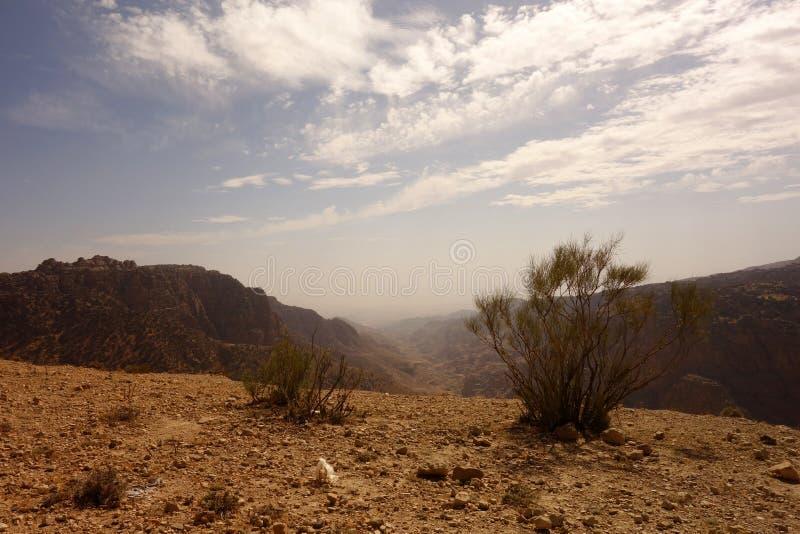 达娜生物圈储备约旦 库存照片