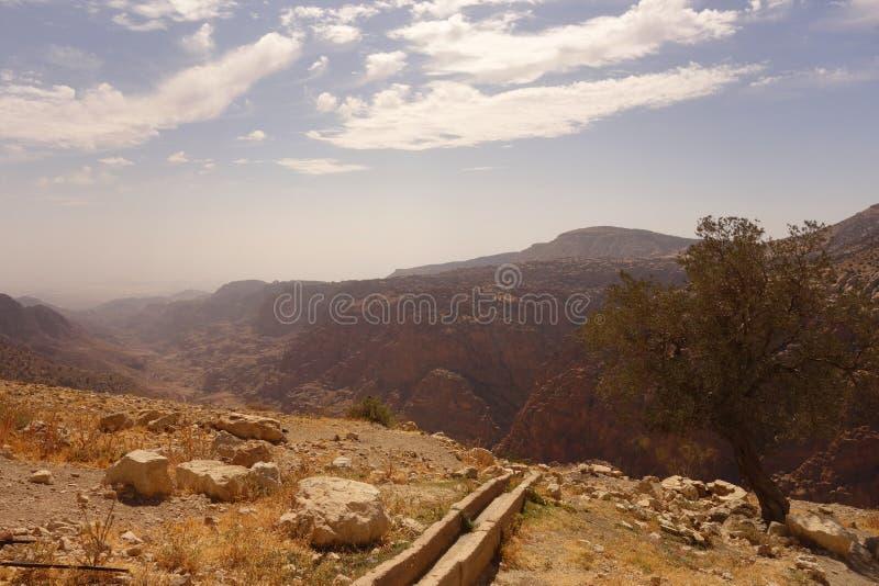 达娜生物圈储备约旦 免版税库存照片