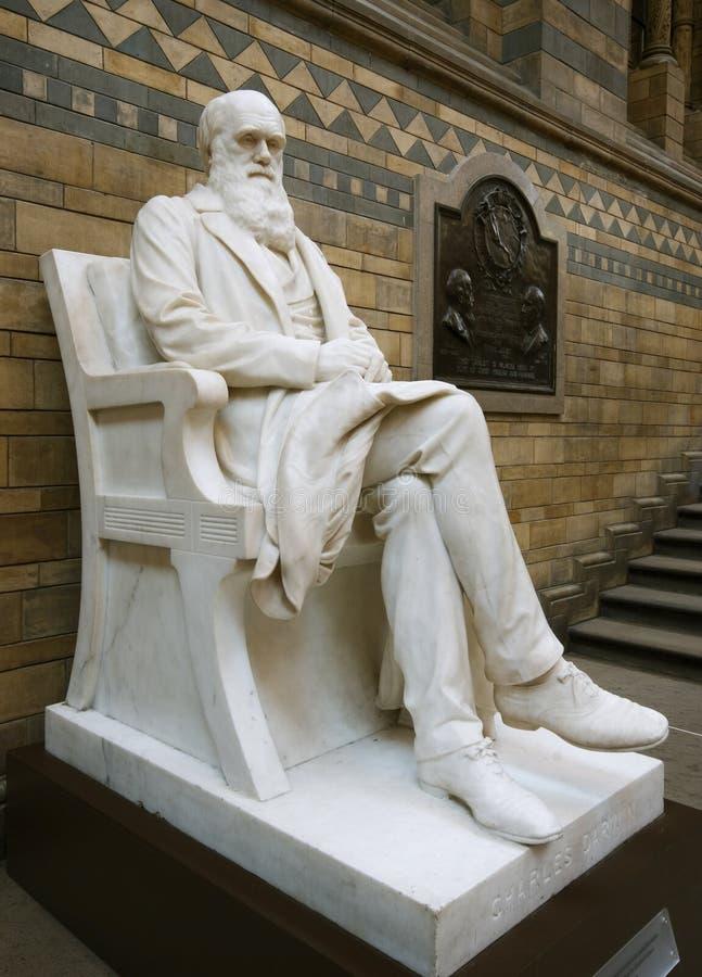 达尔文雕象 图库摄影