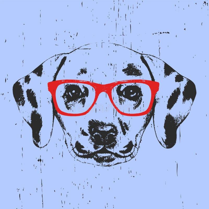 达尔马希亚狗画象与玻璃的 库存例证