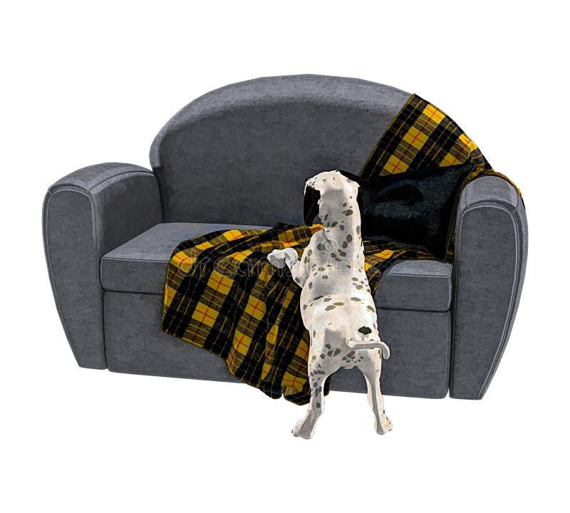 达尔马希亚被隔绝的小狗和沙发 向量例证