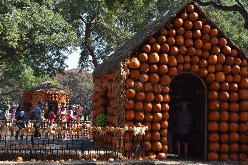达拉斯树木园和植物园的南瓜村庄在得克萨斯 库存照片