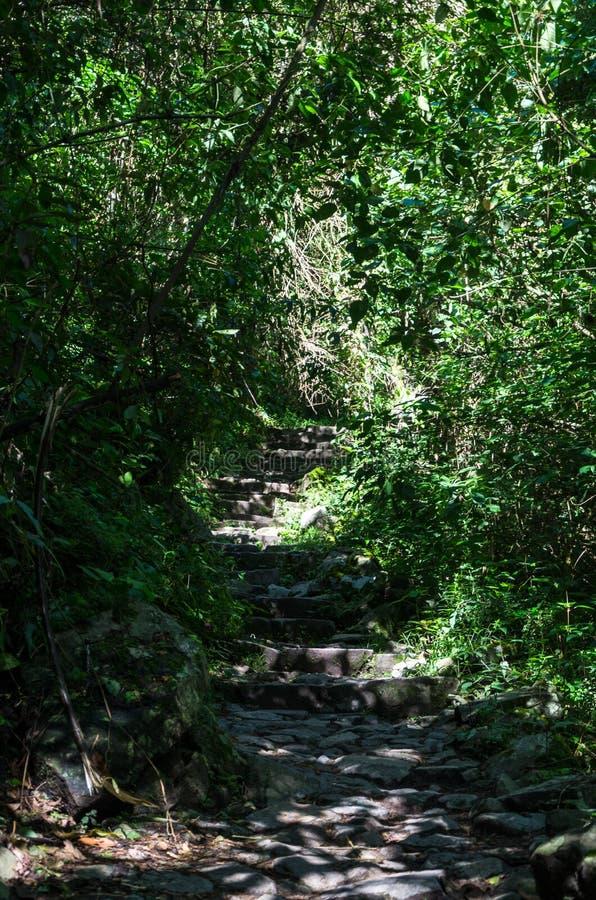 迁徙在印加人足迹的冒险对马丘比丘,秘鲁 免版税库存照片