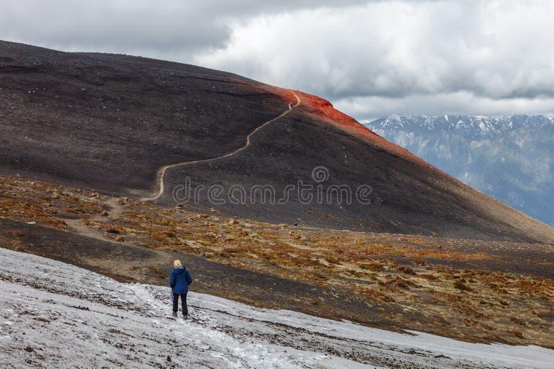 迁徙在奥索尔诺火山火山的倾斜,智利 库存照片