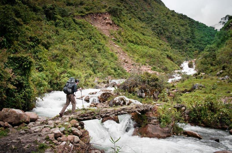 迁徙在山,秘鲁,南美 库存照片