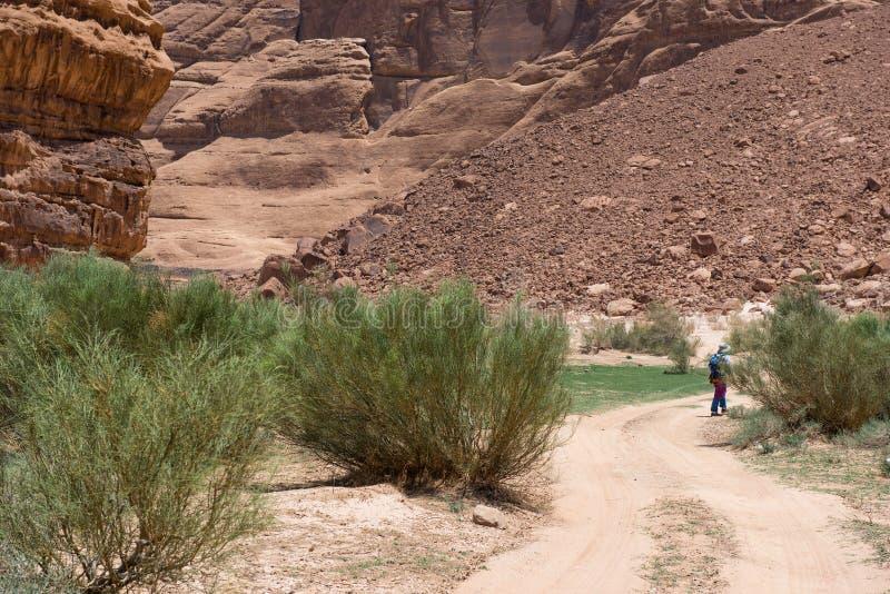 迁徙在沙漠的妇女 免版税库存照片