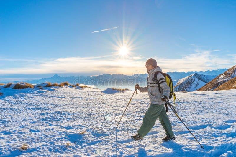 迁徙在阿尔卑斯的雪的妇女背包徒步旅行者 背面图,冬天生活方式,冷的感觉,在背后照明的太阳星,远足杆 免版税库存图片